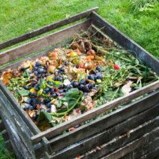 atelier compostage reporté