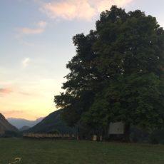 SAPPEY'TILLE 2021 – «Forêts en scènes», toute une programmation extérieure du 11 juin au 17 juillet